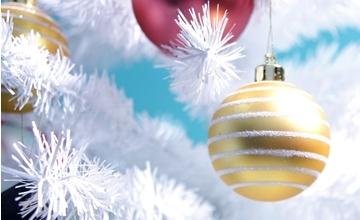 Holiday Closing: December 25 & 26